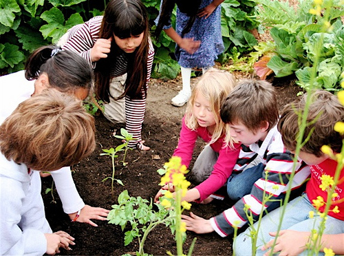 School Garden | via Silver Lake Mom